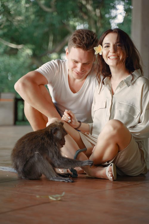 Happy couple playing with monkey on floor