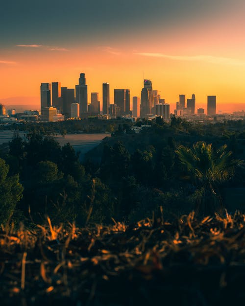 Scenery view of vibrant sunset above skyline