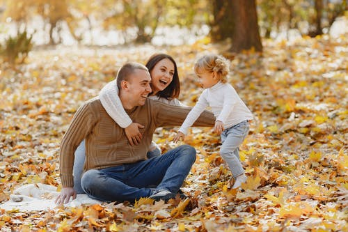 Laughing adult parents in warm clothes sitting together on ground in autumn park while catching adorable little daughter with curly hair running on fallen autumn maple leaves