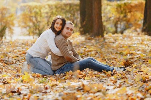 ağaç, arka plan bulanık, arkadaşlık, aşık içeren Ücretsiz stok fotoğraf