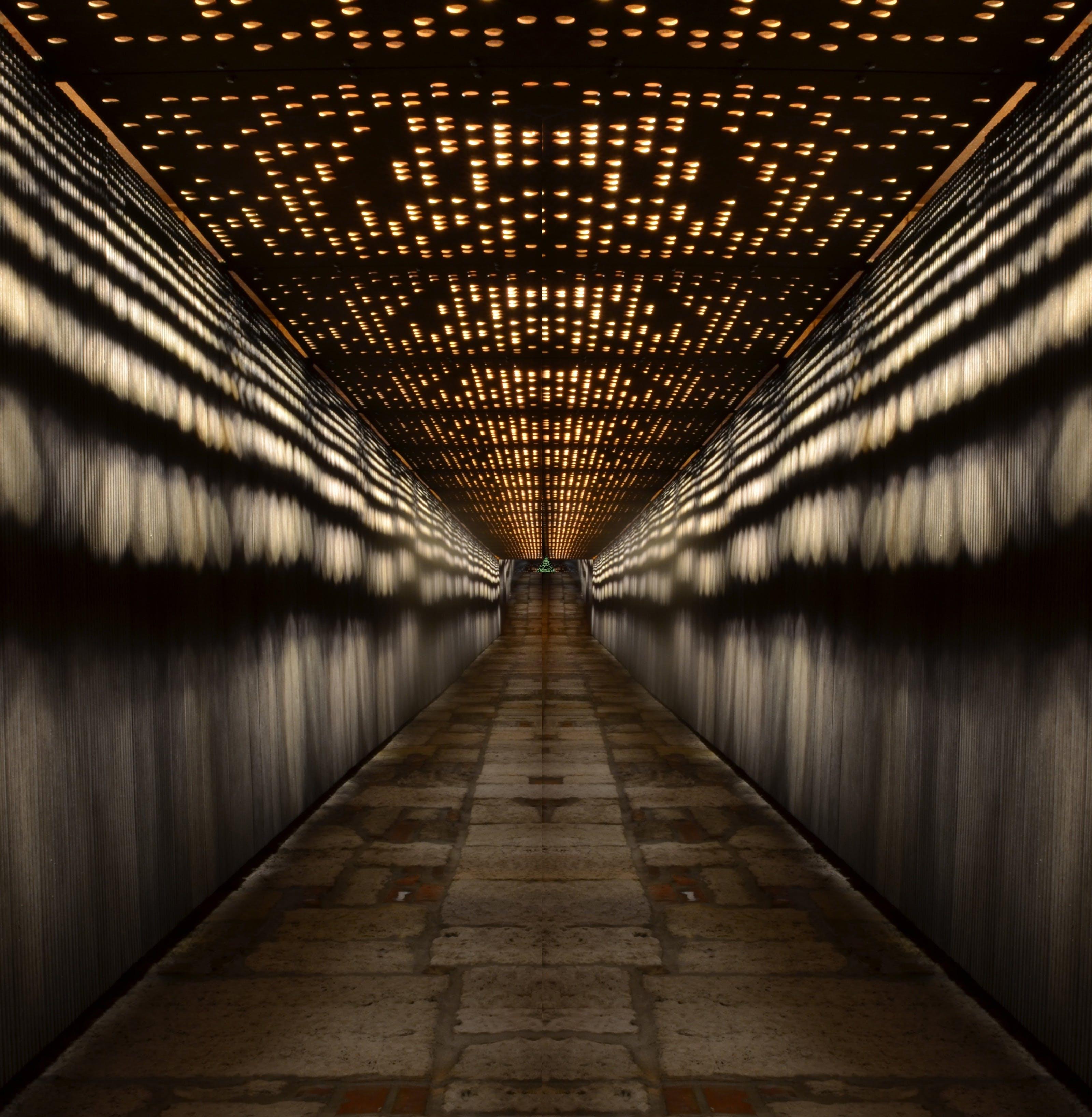 Kostenloses Stock Foto zu abends, architektur, ausleuchtung, budapest