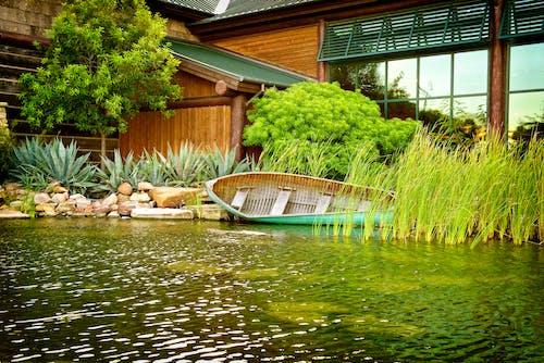 Foto profissional grátis de água, árvore, atraente, barco