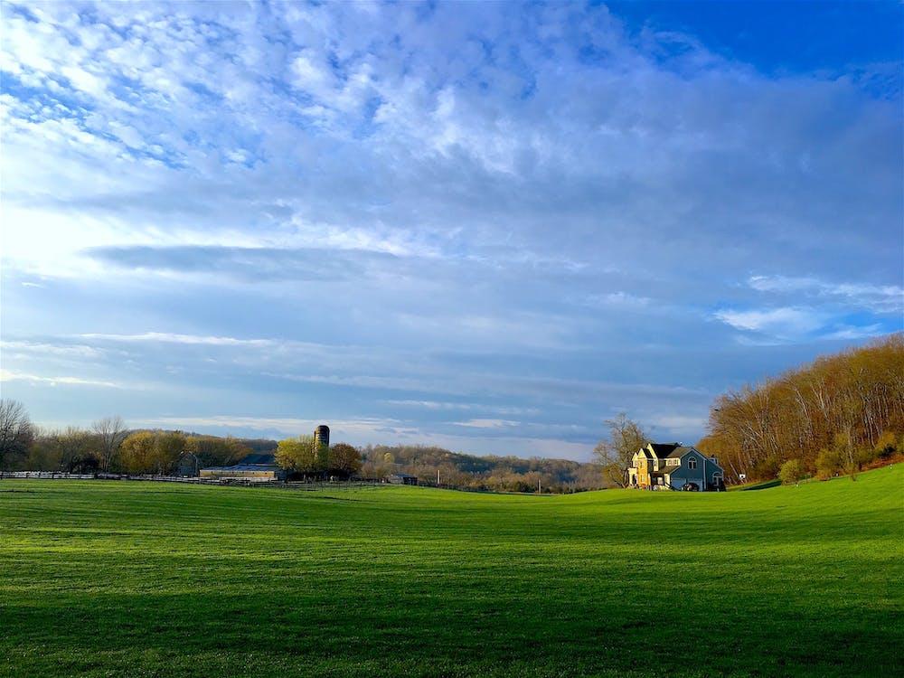 bondgård, fält, fredlig
