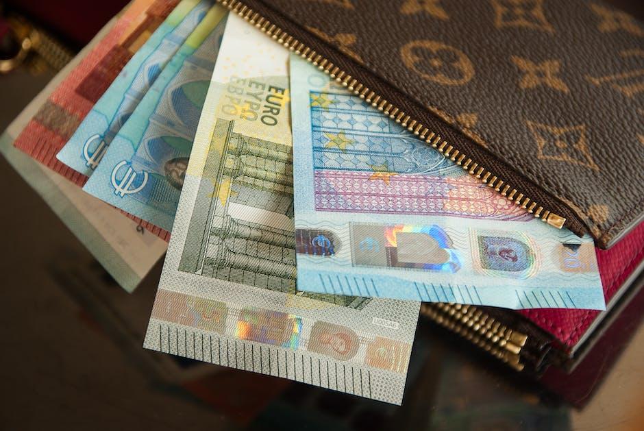 Several Euro Banknotes in Louis Vuitton Wallet