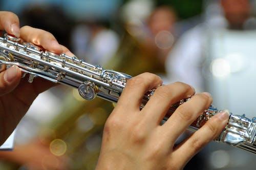 儀器, 古典樂隊, 性能, 成人 的 免費圖庫相片