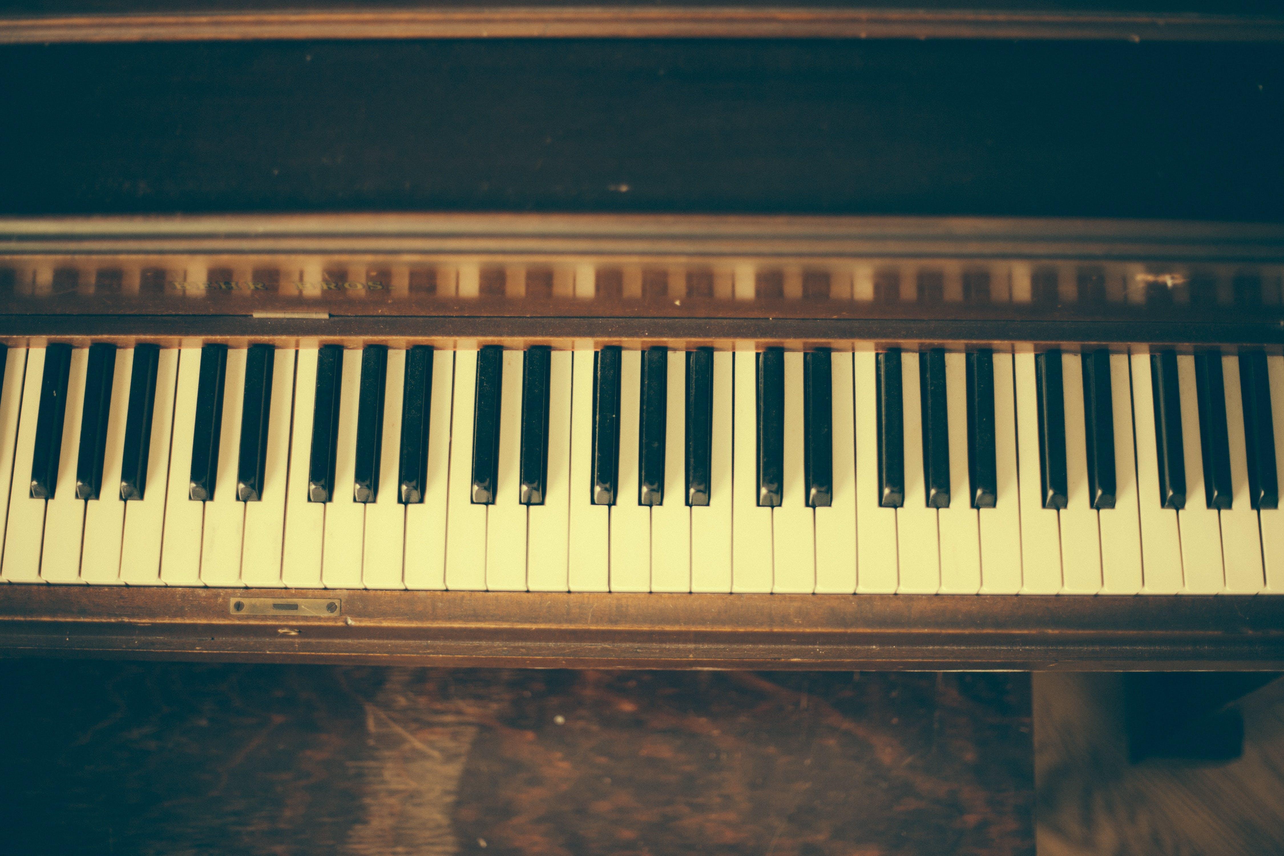 Fotobanka sbezplatnými fotkami na tému akordy, harmónia, hudobný nástroj, klasický