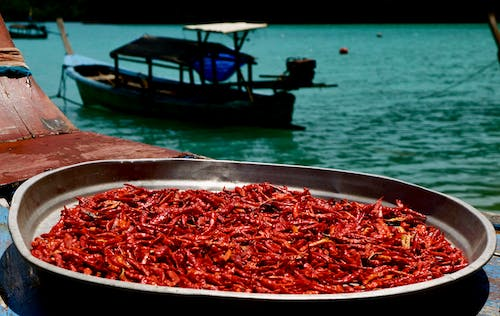 Free stock photo of boat, chilli, chilli peppers