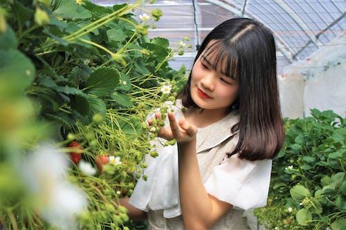 Free stock photo of asian, asian girl, beautiful