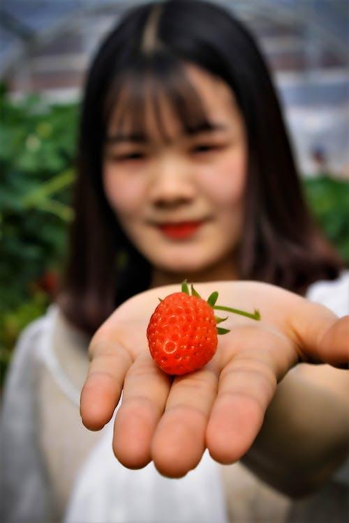 Free stock photo of asian girl, fruit, girl