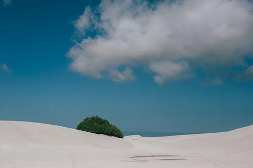 Gratis arkivbilde med anlegg, bakke, blå himmel