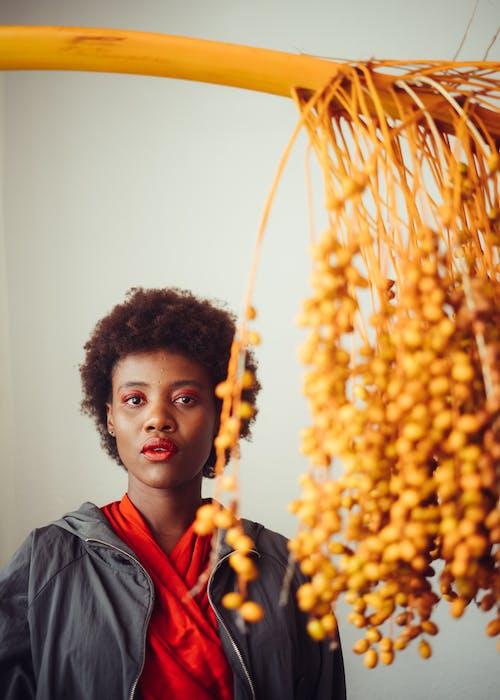 Immagine gratuita di afro, afro-americano, aspetto, bellezza