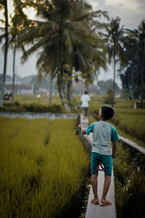 Základová fotografie zdarma na téma 3, aktivita, anonymní, Asie