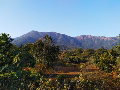#mobilechallenge, #outdoorchallenge, kayalık tepeler, koyu yeşil bitkiler içeren Ücretsiz stok fotoğraf