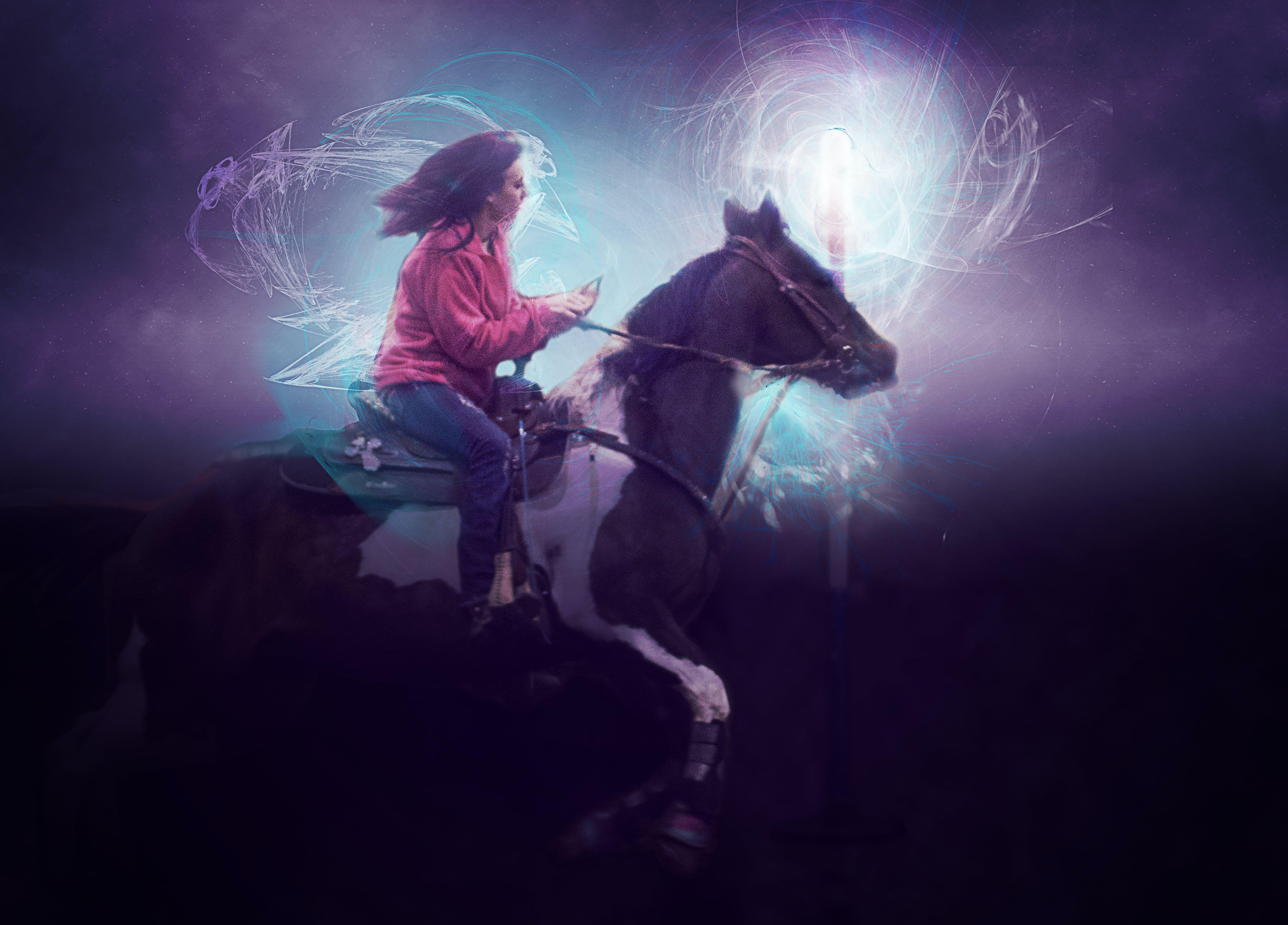 Free stock photo of paint, horse, artistic, photoshop