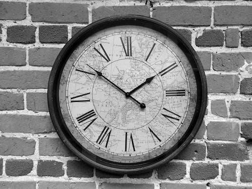 Free stock photo of black and white, brick wall