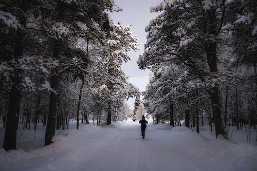 Unrecognizable traveler walking on snowy road