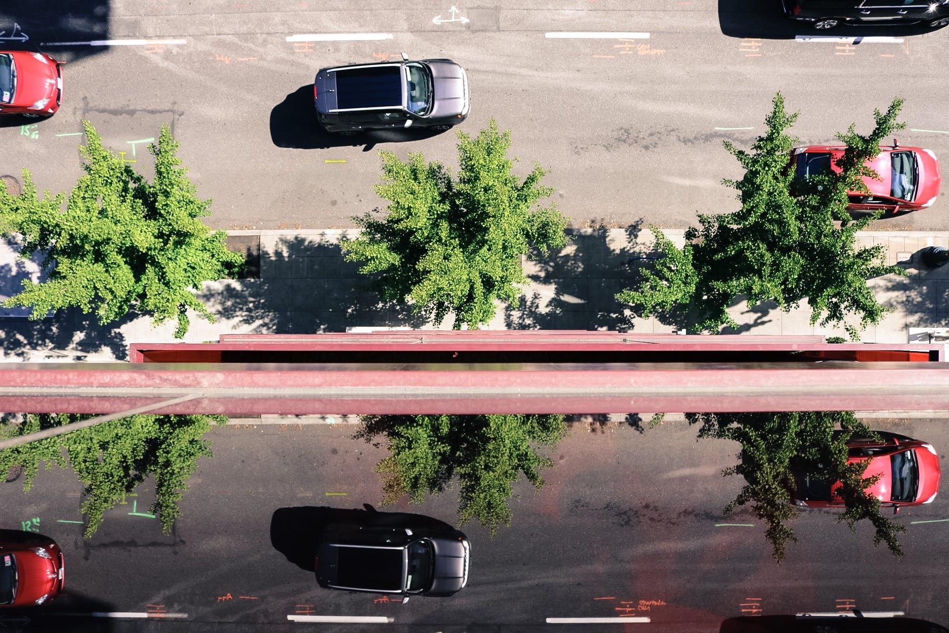 Free stock photo of cars, street, sidewalk, trees
