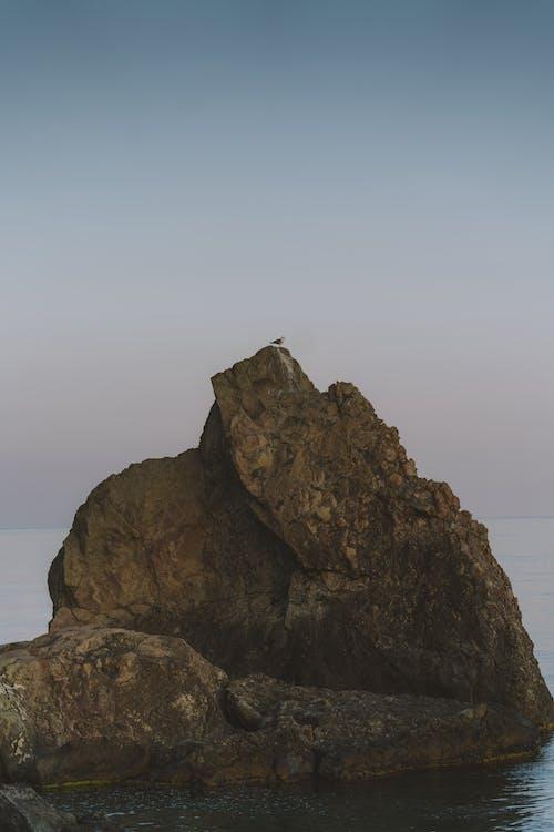 Darmowe zdjęcie z galerii z brzeg oceanu, brzeg plaży, fala