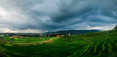 Free stock photo of bhaktapur, farm field, nepal