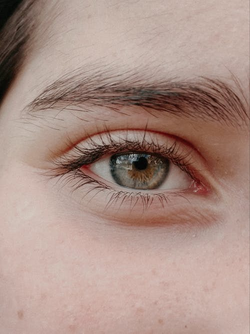 Eye and eyebrow of crop unrecognizable person in daylight