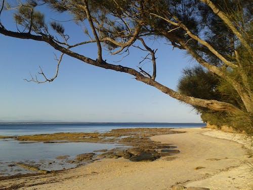 Free stock photo of beach, seascape