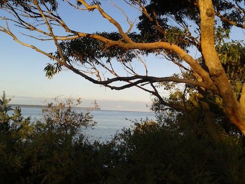 Free stock photo of sea coast, seascape