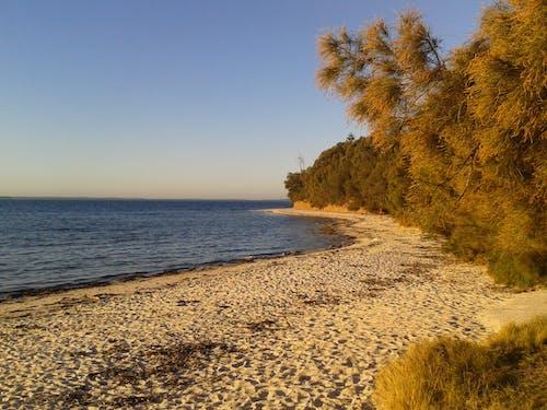 Free stock photo of australia, beach, coastal
