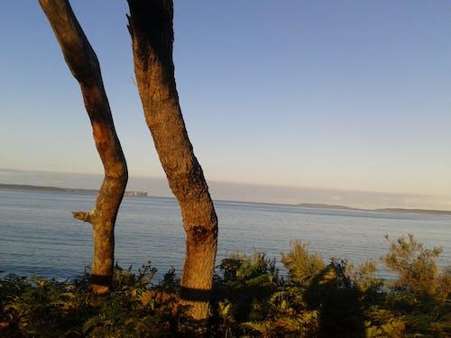 Free stock photo of beach, coastal, jervis bay