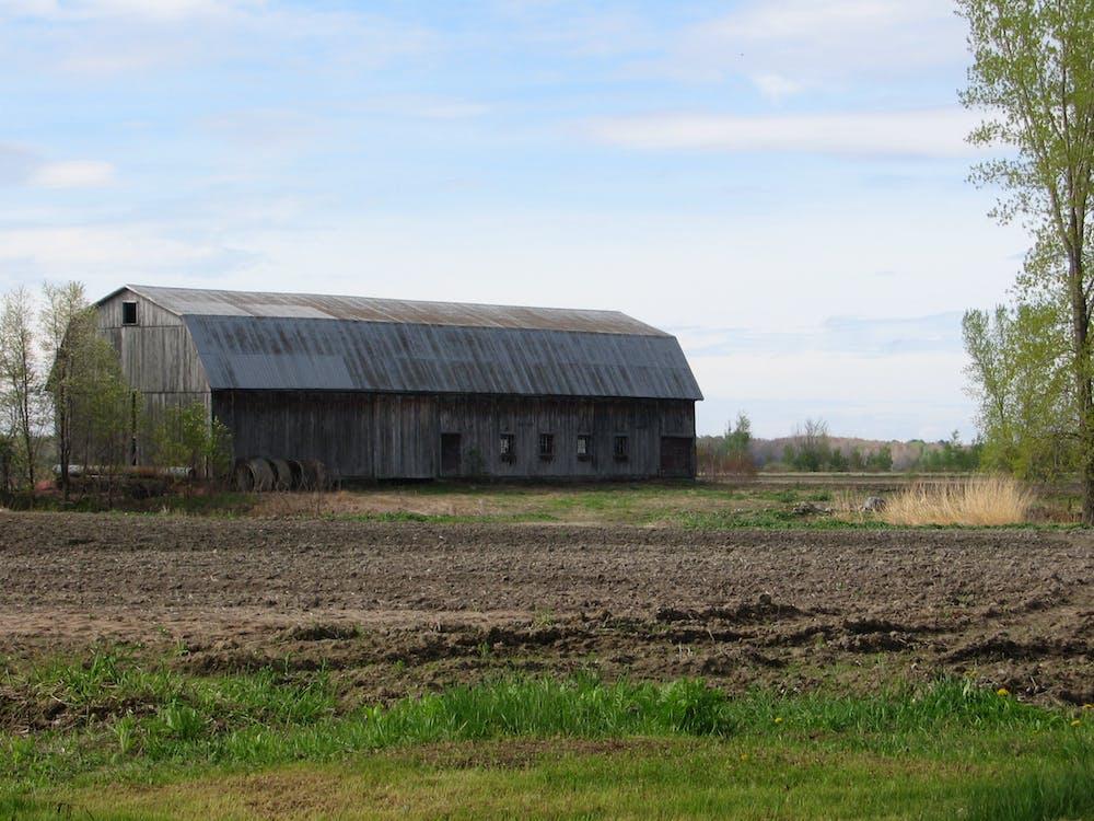 Free stock photo of farm, field