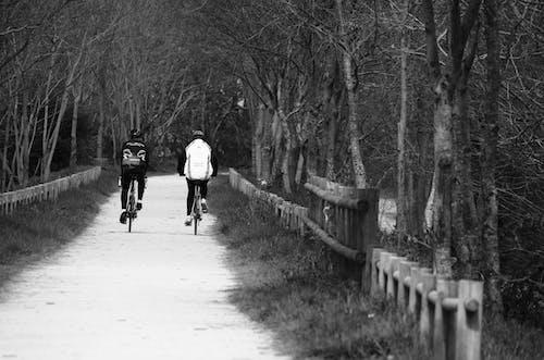 Photos gratuites de bicyclette, cyclistes, la nature, loisir