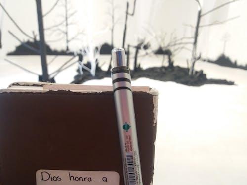 Foto profissional grátis de árvores, escrevendo, lápis, museu de arte