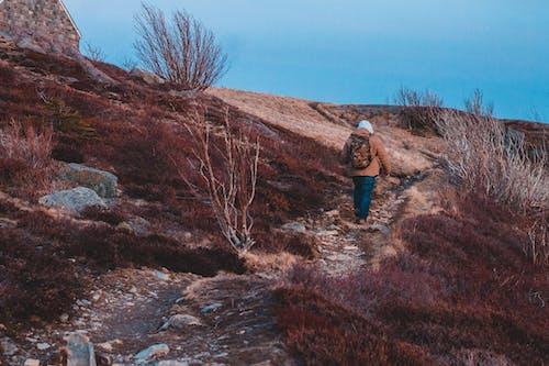 Unrecognizable trekker walking on path on mountain slope