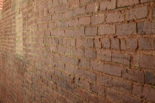 Free stock photo of brick, rustic
