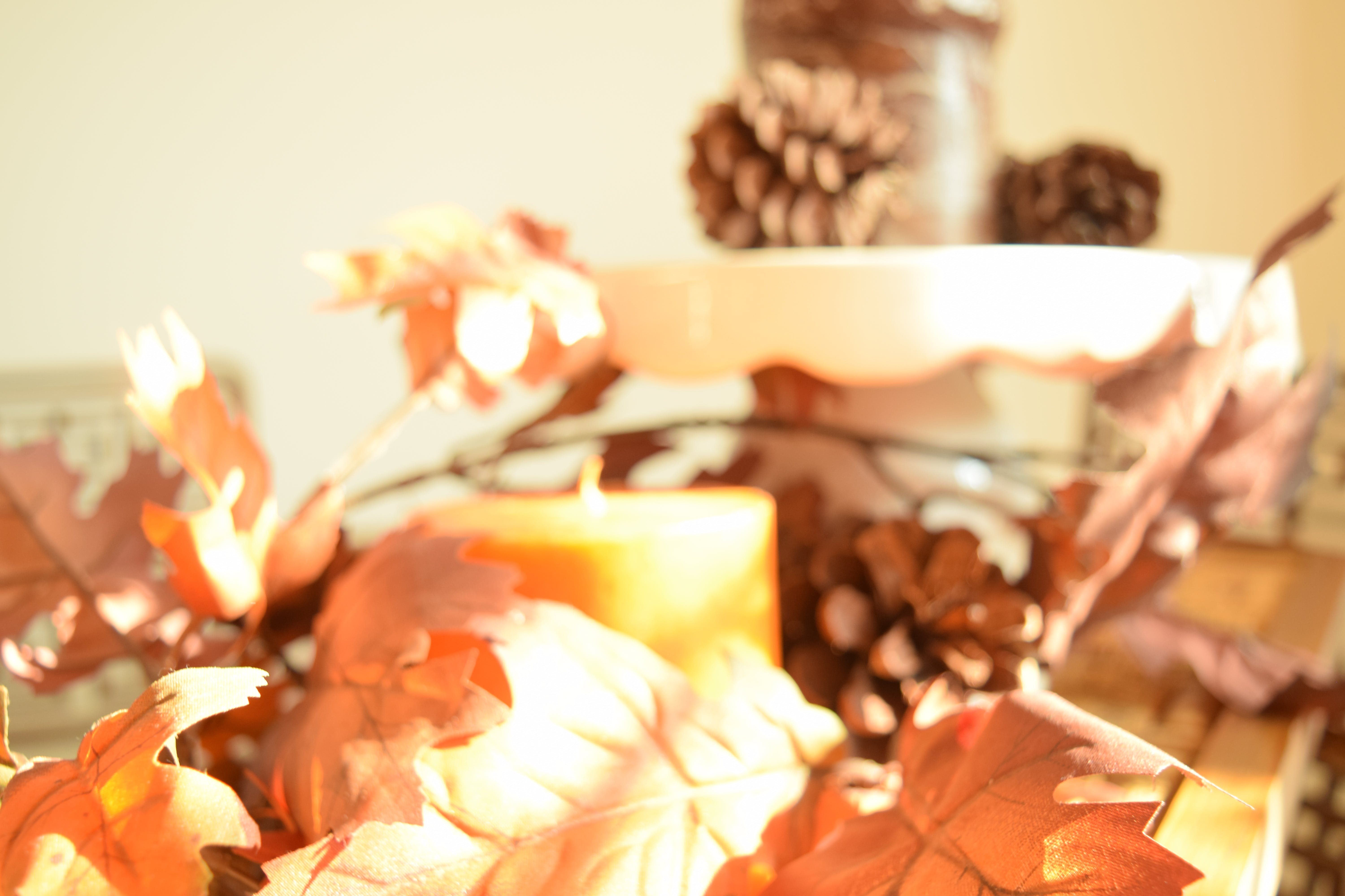 Free stock photo of leaves, autumn, fall, candles