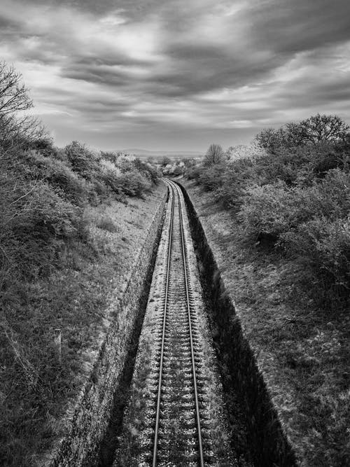 Empty railroad tracks through trees and bushes