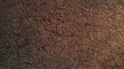 Abstract background of rough cracked brown surface of dry ground with white spots