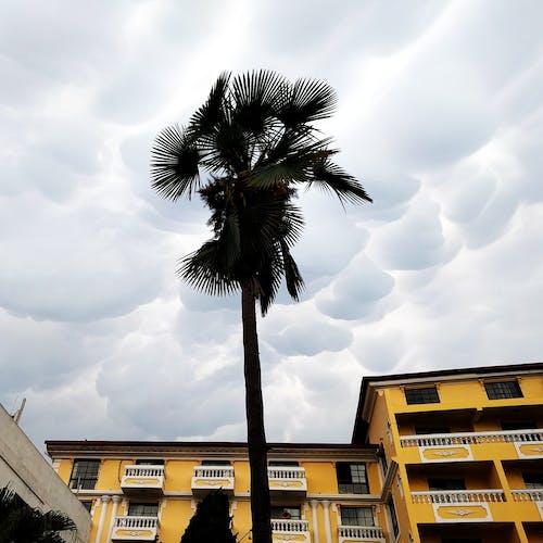 Free stock photo of clouds, kathmandu, nepal, serene