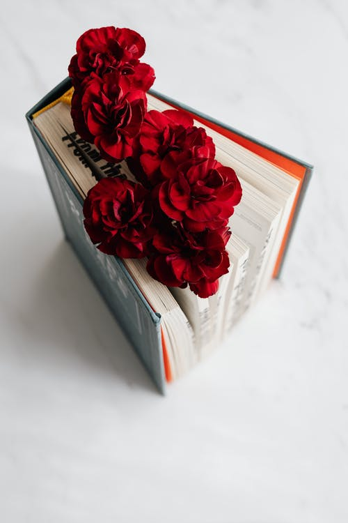 Fragile flowers put inside open book
