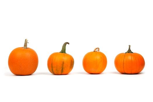 Kostenloses Stock Foto zu essen, gemüse, ernte, orange