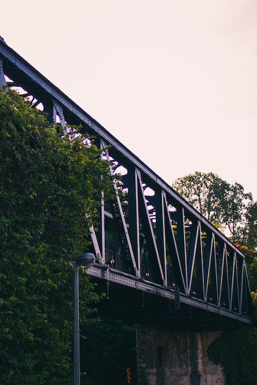 Free stock photo of bridge, railroad, railway