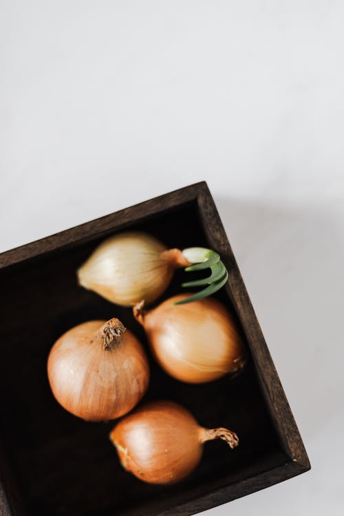 Raw yellow onions in square plate on white background
