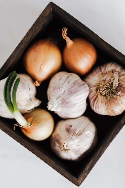 Fresh organic onions and garlic in square pot