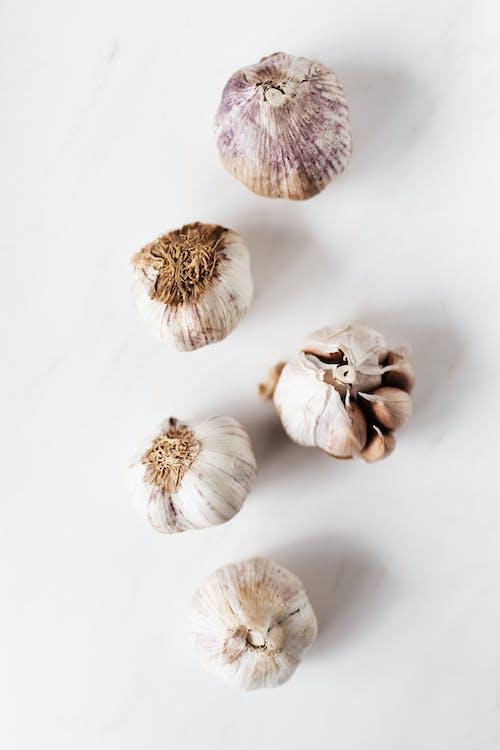 Foto profissional grátis de agricultura, alho, aroma