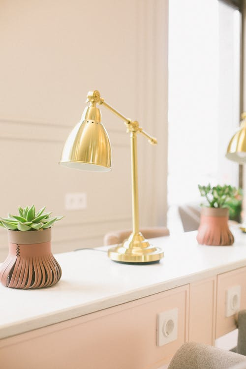 Elegant lamp and plant in creative vase on desk