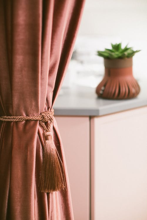 Room with stylish curtains and plant in pot