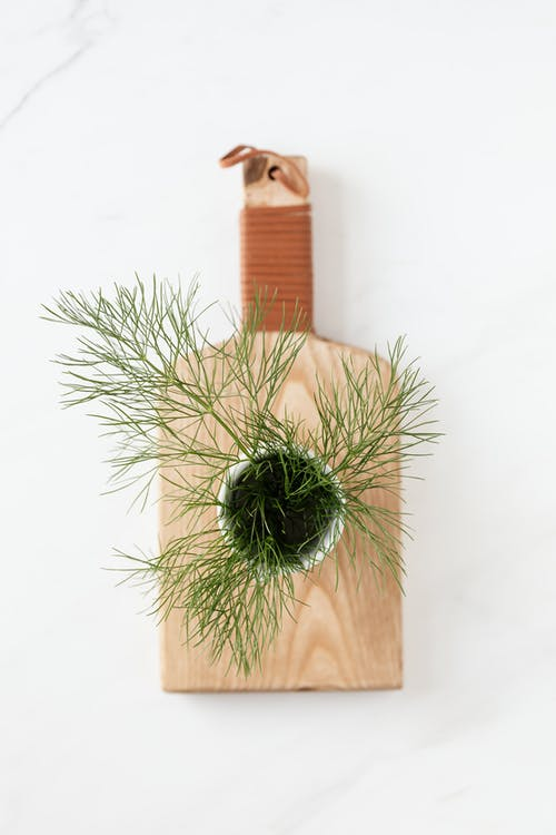 Composition of bunch of fresh dill on wooden cutting board