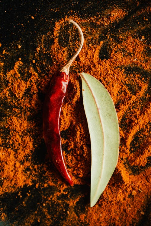 Pepper pod on powder of ground spices