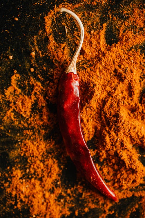 Red chilli pepper on powder of ground spices