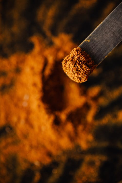 Powder of ground spices on spatula