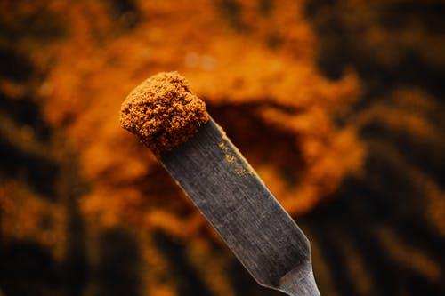 Sample of ground spice on spatula
